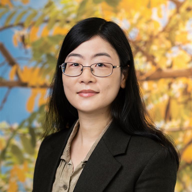 Dr Sisi Liu
